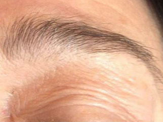 7 Step Brow Design before
